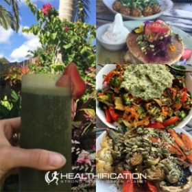 464: How To Prepare Quick And Easy Yet Still Natural And Healthy Plant Based Meals