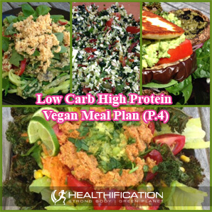 low carb high protein vegan diet plan