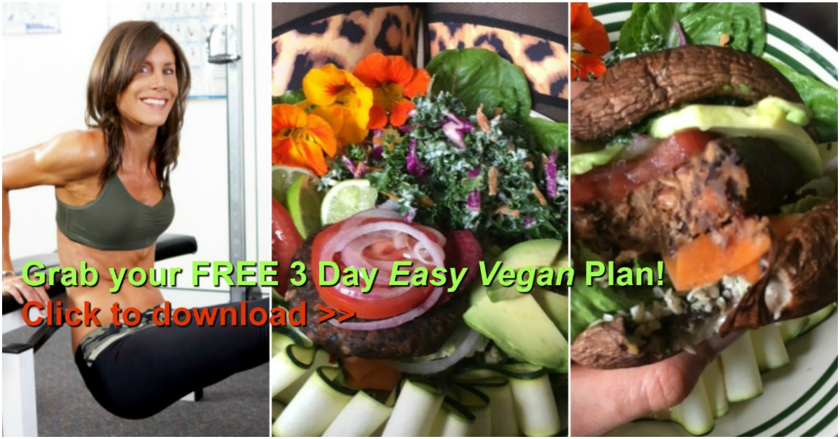 3 Day Easy Vegan Plan