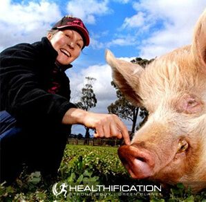 Pam Ahern from Edgars Mission Farm Sanctuary Is Creating A Kinder World For Farmed Animals.
